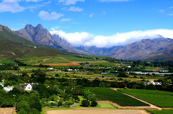 Views of Stellenbsoch winelands.